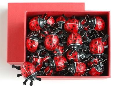 【オーガニック】てんとう虫チョコレート ギフトBOX 50個  【オーガニック/フェアトレード/チョコレート】