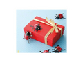 てんとう虫チョコレート プチギフトBOX 20個  【オーガニック/フェアトレード/チョコレート】