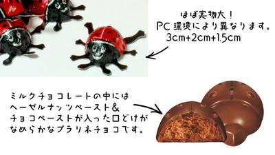 【オーガニック】てんとう虫チョコレート 4個  【オーガニック/フェアトレード/チョコレート】