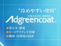 【塗料品/屋根・壁用】太陽光高反射・遮熱塗料 アドグリーンコート EX-001α(アイボリー) 14kg