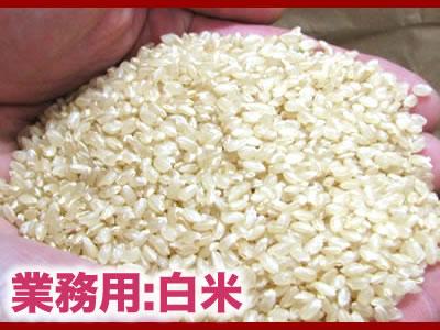 業務用:白米 10キロ/B