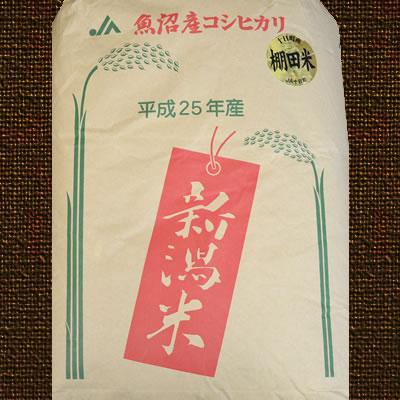 お米マイスターが推奨する 『魚沼産こしひかり』 白米:30キロ